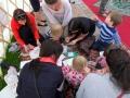 Doprovod akce mandala dětem