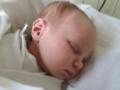 Ouško novorozence
